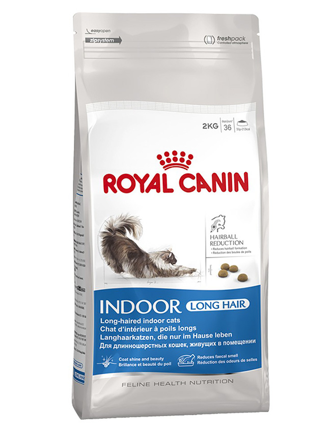 Brit или корм royal canin